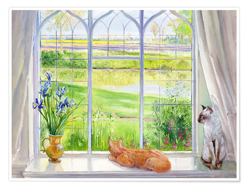 Póster Cats at the window