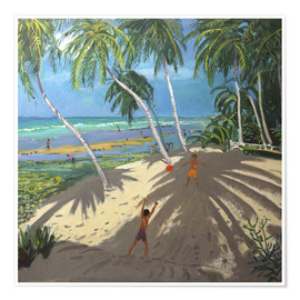 Póster  Palm trees, Clovelly beach, Barbados - Andrew Macara