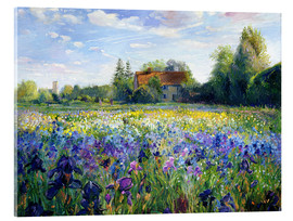 Cuadro de metacrilato  Field of flowers in the sunset - Timothy Easton
