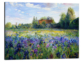 Aluminio-Dibond  Field of flowers in the sunset - Timothy Easton