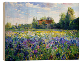 Madera  Field of flowers in the sunset - Timothy Easton