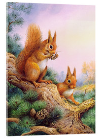 Cuadro de metacrilato  Pair of Red Squirrels on a Scottish Pine - Carl Donner
