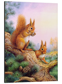 Cuadro de aluminio  Pair of Red Squirrels on a Scottish Pine - Carl Donner