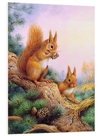 Cuadro de PVC  Pair of Red Squirrels on a Scottish Pine - Carl Donner