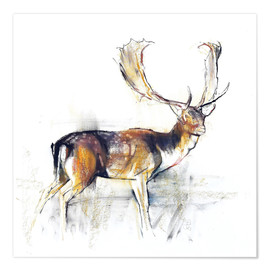 Póster Study of a Stag
