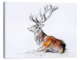 Lienzo  Lying Stag - Mark Adlington