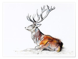 Póster Lying Stag
