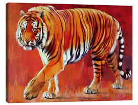 Lienzo  Bengal Tiger - Mark Adlington