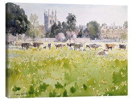Lienzo  Looking Across Christ Church Meadows (Oxford) - Lucy Willis