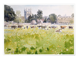 Póster Looking Across Christ Church Meadows (Oxford)