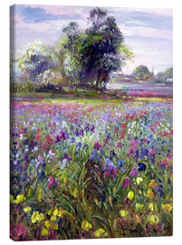 Lienzo  Flower field with tree - Timothy Easton