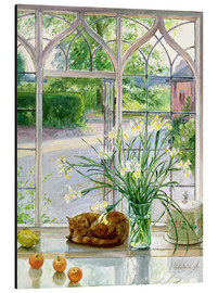 Aluminio-Dibond  Sleeping cat in the window - Timothy Easton