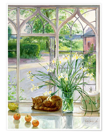 Póster  Sleeping cat in the window - Timothy Easton