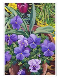 Póster Flower pots with pansies, 2007