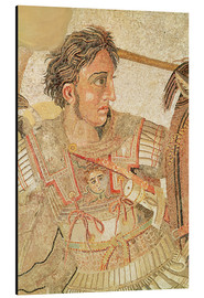 Cuadro de aluminio  Alexander the Great - Roman