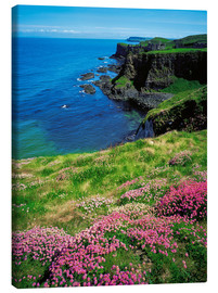 Lienzo  Dunluce Castle, Ireland - The Irish Image Collection