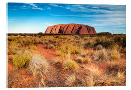 Cuadro de metacrilato  Ayers Rock in the evening - Matteo Colombo