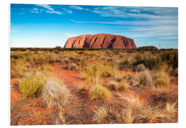 Forex  Ayers Rock in the evening - Matteo Colombo