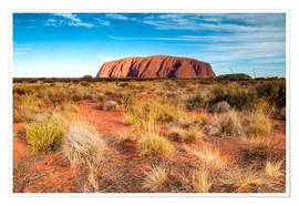 Póster Ayers Rock in the evening