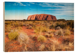 Cuadro de madera  Ayers Rock in the evening - Matteo Colombo