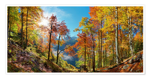 Póster Mountain forest in autumn