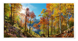 Póster  Mountain forest in autumn - Michael Rucker