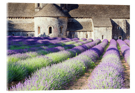 Metacrilato  Famous Senanque abbey with its lavender field, Provence, France - Matteo Colombo