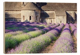 Cuadro de madera  Famous Senanque abbey with its lavender field, Provence, France - Matteo Colombo