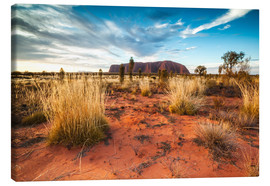 Lienzo  Red Desert at Ayers Rock - Matteo Colombo