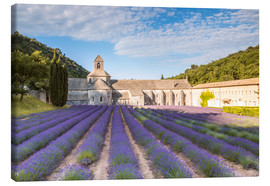 Lienzo  Famous Senanque abbey with lavender field, Provence, France - Matteo Colombo