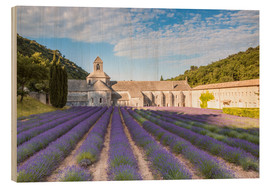 Matteo Colombo - Famous Senanque abbey with lavender field, Provence, France