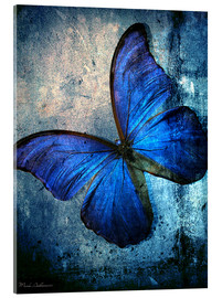 Metacrilato  butterfly - Mark Ashkenazi