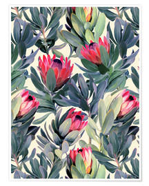 Póster  Painted Proteas - Micklyn Le Feuvre