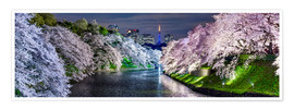 Póster  Chidorigafuchi in Tokyo Japan in spring with cherry blossom - Jan Christopher Becke