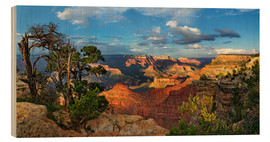 Cuadro de madera  Grand Canyon with knotty pine - Michael Rucker