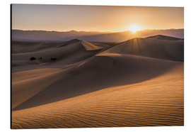 Cuadro de aluminio  Sunset at the Dunes in Death Valley - Andreas Wonisch