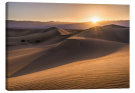 Lienzo  Sunset at the Dunes in Death Valley - Andreas Wonisch