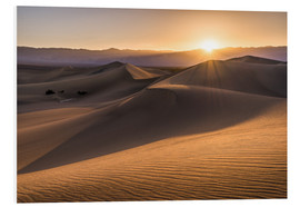 Cuadro de PVC  Sunset at the Dunes in Death Valley - Andreas Wonisch