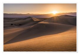 Póster  Sunset at the Dunes in Death Valley - Andreas Wonisch