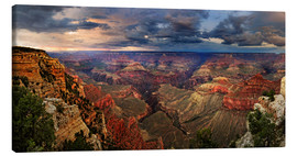 Lienzo  Grand Canyon View - Michael Rucker