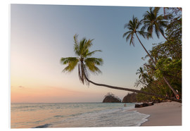 Cuadro de PVC  Palm tree and exotic sandy beach at sunset, Costa Rica - Matteo Colombo