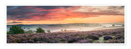 Póster  Panorama perfect sunrise heath - Sander Grefte