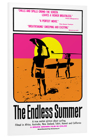 Cuadro de PVC  The Endless Summer - Entertainment Collection