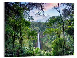 Cuadro de metacrilato  Rainforest and Waterfall, Costa Rica - Matteo Colombo