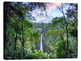 Lienzo  Rainforest and Waterfall, Costa Rica - Matteo Colombo