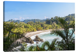 Lienzo  Beach and tropical forest, Manuel Antonio National Park, Costa Rica - Matteo Colombo