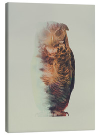Lienzo  Norwegian Woods The Owl - Andreas Lie