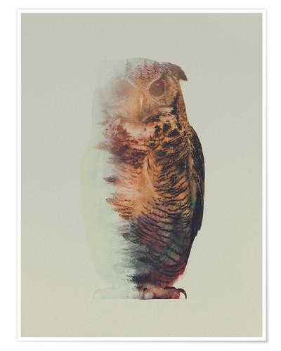 Póster Norwegian Woods The Owl