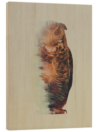 Cuadro de madera  Norwegian Woods The Owl - Andreas Lie