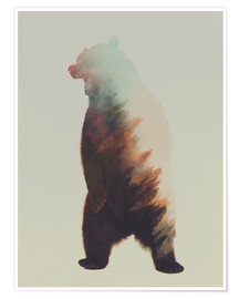 Póster  Norwegian Woods The Bear - Andreas Lie